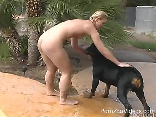 After swimming, aroused MILF wants Rottweiler to fuck her twat